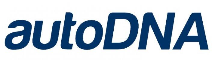 logo_niebieskie