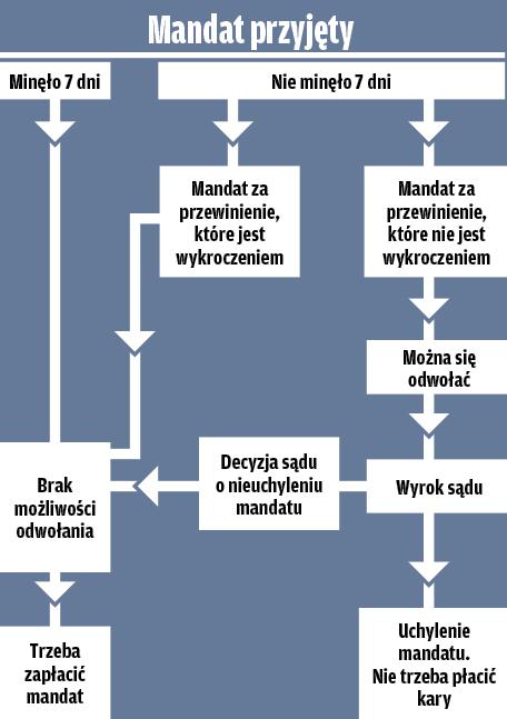 przyjęcie mandatu - procedura odwołania